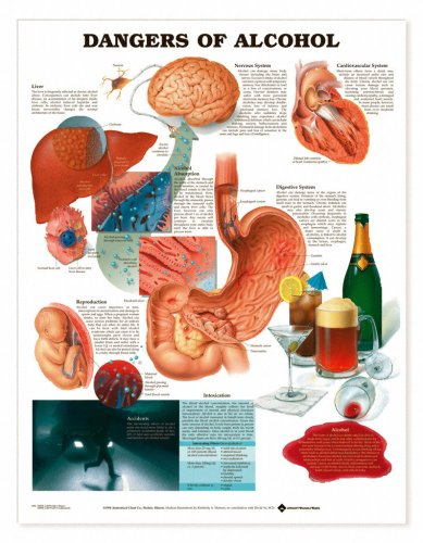 Alcoholism - Dangers of Alcohol Chart Lake Forest Anatomicals Health