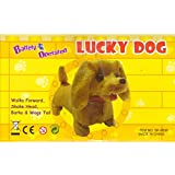 Lucky the Dachshund Puppy, Battery Operated Walking Dog [Toy]