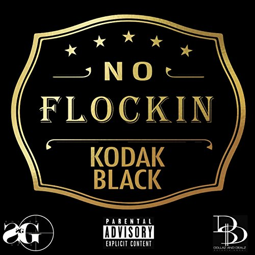 No Flockin [Explicit]
