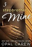 Stepbrother, Mine #3