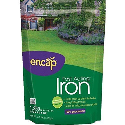 25-lb-fast-acting-iron-soil-acidifier-1-each-by-encap
