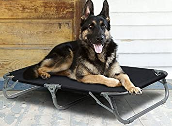 GigaTent Elevated Pet Cot with Steel Frame