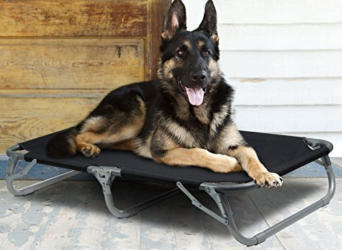 Large Elevated Pet Cot with Steel Frame - Foldable Raised Play and Rest Bed for Dogs and Cats with Bonus Storage Bag - 42