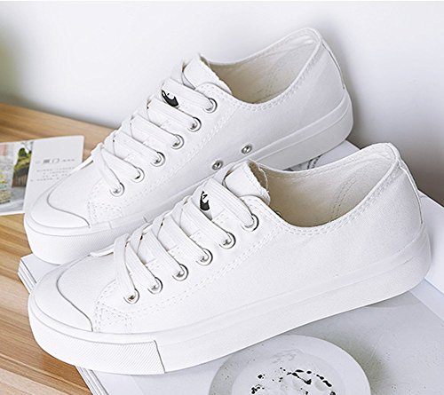 Summerwhisper Vrouwen Trendy Lage Top Platform Sneakers Lace Up Plimsoll Canvas Skate Schoenen Wit