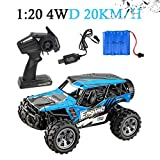 Hot RC Car Toys for Kids Age 8 1:20 2.4G 4WD 20km h High Speed Off Road Remote Control Truck Radio Remote Control Car with USB Charge Line for Children Christmas Best RC Car Gift (Sky Blue)