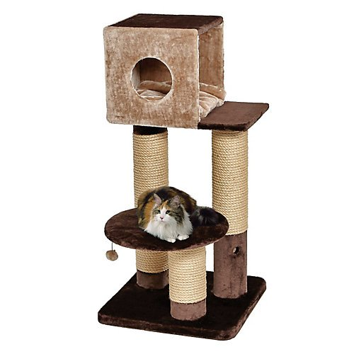 Midwest Home (2/Boxes) Jubilee Cat (Feline Nuvo Cat Furniture)