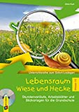 Lebensraum Wiese und Hecke - Klasse 1/2: Stundenverläufe, Arbeitsblätter und Bildvorlagen für die Grundschule (Unterrichtsreihe zum Sofort-Loslegen)