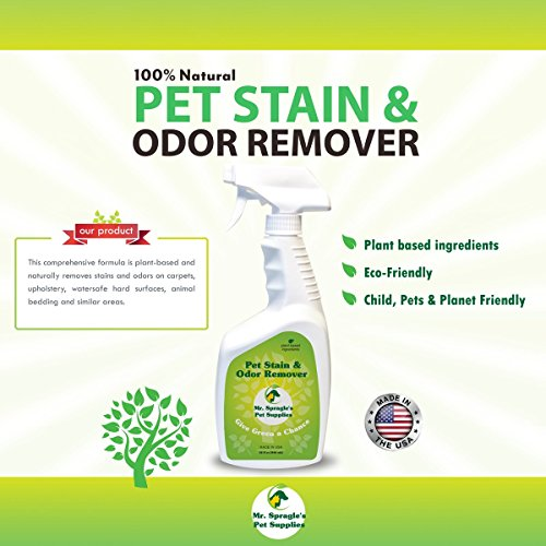 Pet Stain Remover, Animal Stain Cleaner, Pet Odor Remover - Pet Stain And Odor Remover By Mr.Spragles Pet Supplies - Squirt Bottle Sprayer, No Harsh Chemicals, Carpets, Cars, Hardwood (Oder Carpet Remover)