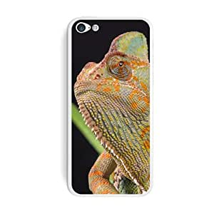 Graphics and More Veiled Chameleon - Lizard Reptile Protective Skin Sticker Case for Apple iPhone 5 5s - Set of 2 - Non-Retail Packaging - Opaque