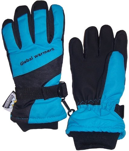 NIce Caps Adults Unisex Thinsulate and Waterproof Premier Colorblocked Ski Gloves