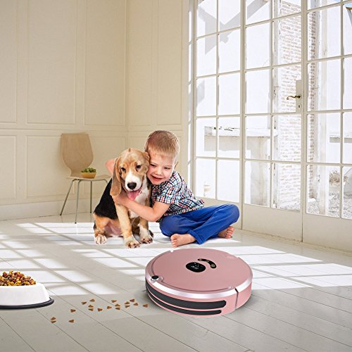 HUIBOT S01 Robotic Vacuum Mop Sweeper Cleaner With Virtual Wall Anti-Drop Self Charging for Pet Hair Allergens for Hard Wood Floor and Thin Carpet (Rose) by HUIBOT (Image #1)