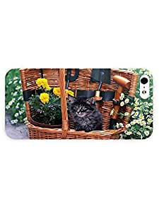 3d Full Wrap case cover for iPhone 5/5s Animal Little Black Cat XYhYE85TtjT