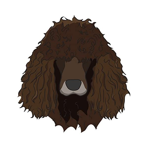 "Irish Water Spaniel Street Sign | Indoor/Outdoor | Dog Lover Funny Home Décor for Garages, Living Rooms, Bedroom, Offices | SignMission personalized gift | 36"" Wide Plastic Sign 2"