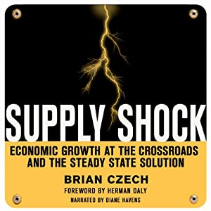 Supply Shock Audiobook