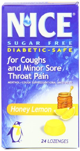 N'ICE Sugar Free Lozenges, Honey Lemon, 24-Count Package (Pack of 6)