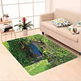 Nalahome Custom carpet ntasy Hobbit Land House in Magical Overhill Woods Movie Scene Image New Zealand Green Brown Blue area rugs for Living Dining Room Bedroom Hallway Office Carpet (5' X 7')
