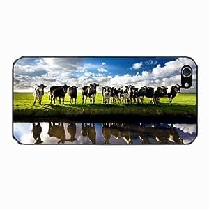 Netherlands Cows - Protector de pantalla con diseño de vacas holandesas para iPhone 5 y 5S