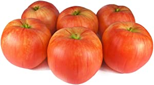 GuCra Artificial Fruit, Apple 6 pcs Pack, Fruit Model (Red-Big)