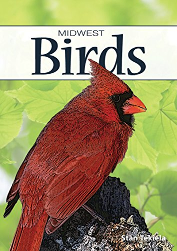 Birds of the Midwest (Nature's Wild Cards)