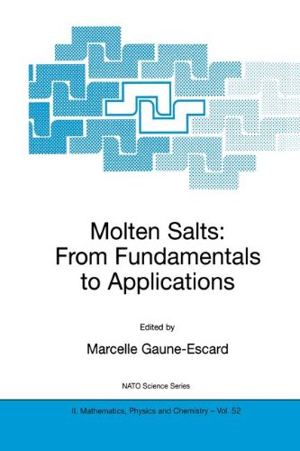 Molten Salts: From Fundamentals to Applications (Nato Science Series II:)