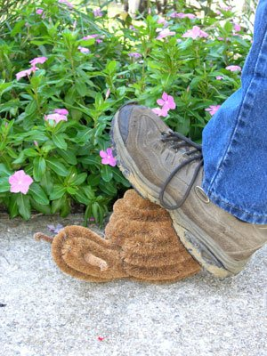 Snail Boot Brush - made from coir - durable and adorable garden decor