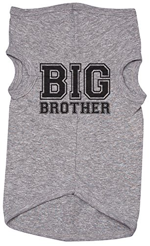 Brother Shirt for Dogs/Big Brother (College Font) / Grey Puppy Tee/Siblings (XL)]()