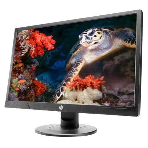 "HP V214A 20.7"" Widescreen LCD Monitor - 1FR84A6"
