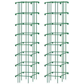 Square Heavy Gauge Extra Tall Tomato Cage, Set of 2 Green