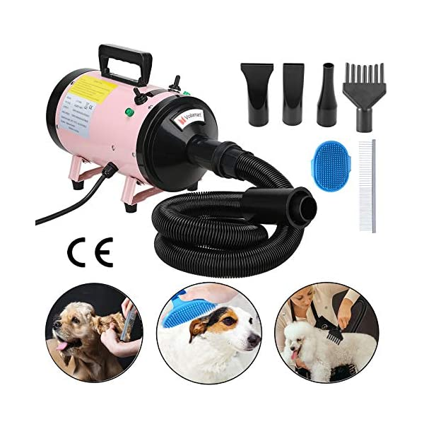 Voilamart 2800W Pet Grooming Hair Dryer High Velocity Dog Cat Hairdryers Low Noise Dryer Blaster with 2 Speed Adjustable Temperature Heater and Flexible Hose, Pink 1