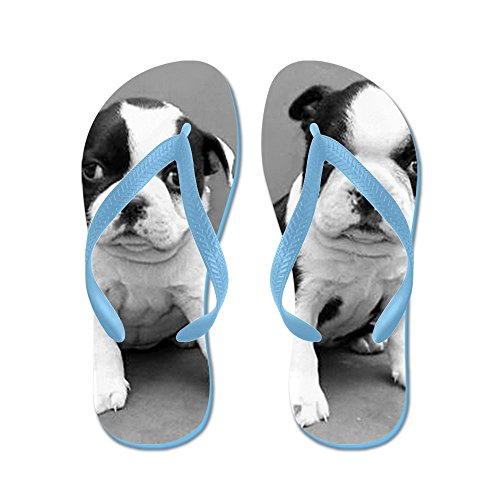 Cafepress Boston Terrier Valpar - Flip Flops, Roliga Rem Sandaler, Strand Sandaler Caribbean Blue