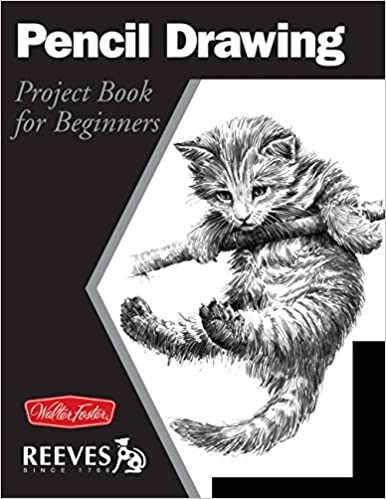 Buy pencil drawing project book for beginners wf reeves getting started book online at low prices in india pencil drawing project book for beginners