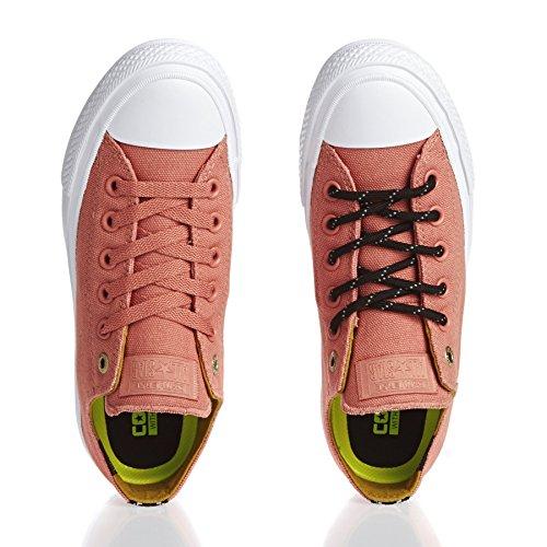 Converse Chuck Taylor All Star Ii Low Damen Sneaker Pink Rose
