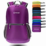 ZOMAKE Ultra Lightweight Packable Backpack Water Resistant Hiking Daypack,Small Backpack Handy Foldable Camping Outdoor Backpack Little Bag (Purple)