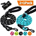 2 Pack Dog Leash 5 FT Thick Durable Nylon Rope with Padded Handle and Reflective Surface - Multiple Color Options and Free Bag Dispenser
