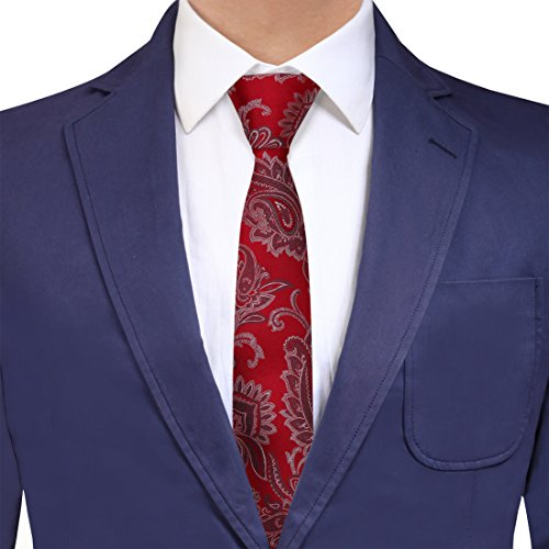 Y&G YAEB0024 Red Grey Paisley Fitness For Casual Woven Jacquard Silk Tie Presents Idea For Halloween Skinny Tie ()