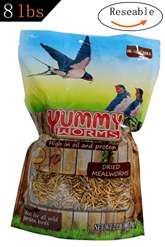 yummyworms-2-lbs-dried-mealworms-non-gmo-treats-for-chickens-bluebirds-wild-birds-turtles-hamsters-f