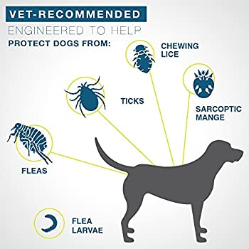 Bayer Seresto Flea & Tick Collar For Large Dog- From 7 Weeks Onwards Or Over 18 Lb, 8 Month Protection 2