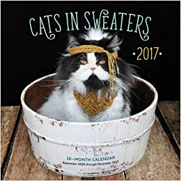 Cats in Sweaters 2017 16,Month Calendar September 2016 through December  2017 (Calendars 2017) Amazon.co.uk Editors of Rock Point 9781631062070  Books