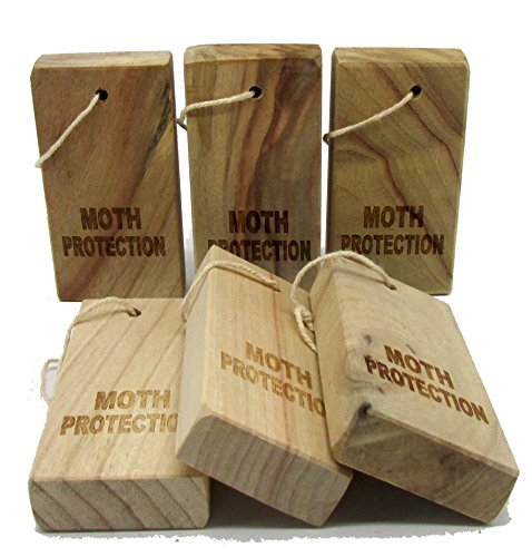 moth-away-household-essentials-fresh-cinnamomum-camphora-root-storage-accessories-for-repeling-pests