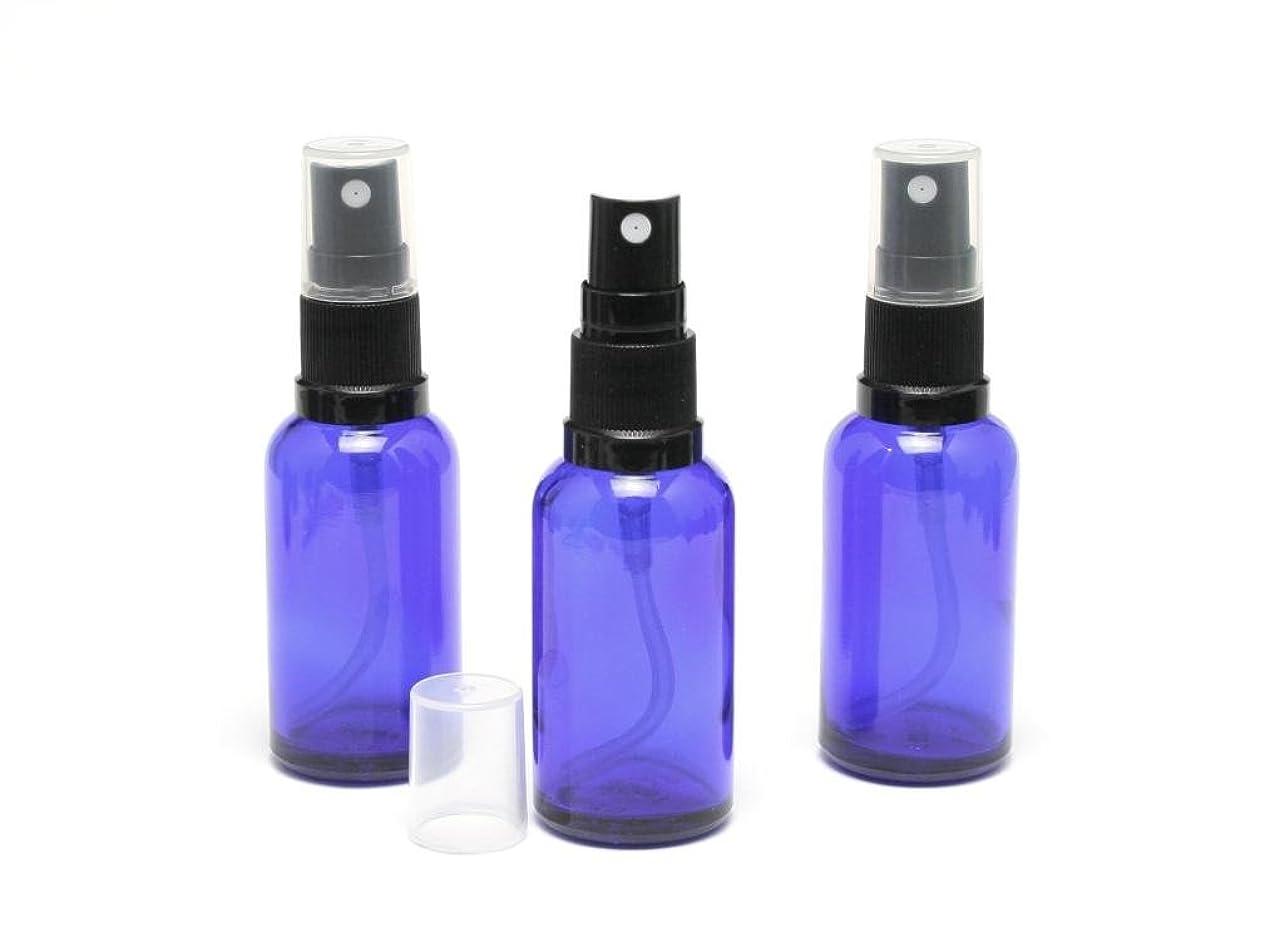 致命的強化ラジエーター4本セット円筒形のエッセンシャルオイルガラスディフューザーボトル50MLの香りのアクセサリー