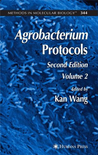 2: Agrobacterium Protocols: Volume II (Methods in Molecular Biology)