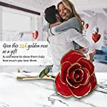 Enchanted-24K-Golden-Rose-That-Lasts-Forever-Made-of-Real-Preserved-Roses-Dipped-in-Gold-The-Crystal-Galaxy-Flower-is-Romantic-Valentines-Day-Anniversary-Wedding-and-Proposal-Gifts-for-Her-Idea
