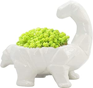 GeLive Cartoon Dinosaur Planter, Ceramic Succulent Plant Pot, Fun Animal Planter, Flower Container, Window Box, Home Decor Vase, Desktop Decorative Organizer, with Draining Hole (White)