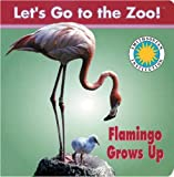 Flamingo Grows Up, Laura Gates Galvin, 1568999747