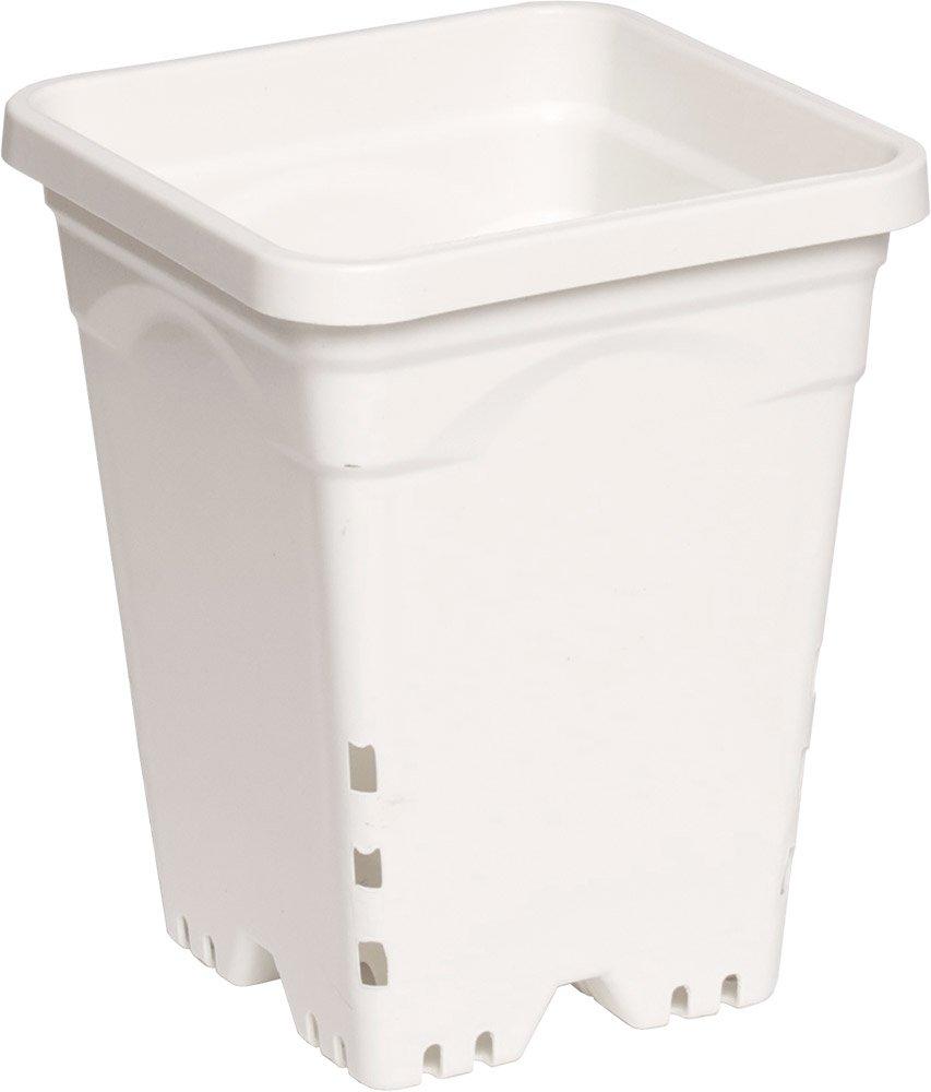 "Active Aqua 7""x7"" Square White Pot, 9"" Tall, Pack Of 50"