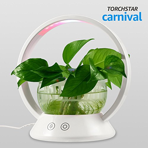 LED Indoor Garden Kit Plant Grow Light, Fish Tank Design with Sensitive Touch Control, Auto-Timer Function for Bedroom, Kitchen, Office by TORCHSTAR
