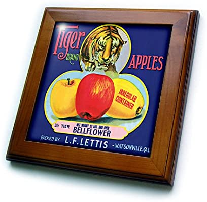 3dRose 3D Rose Brand Stalking Tiger and Red and Yellow Apples-Framed Tile ft/_171136/_1 8 by 8-inch