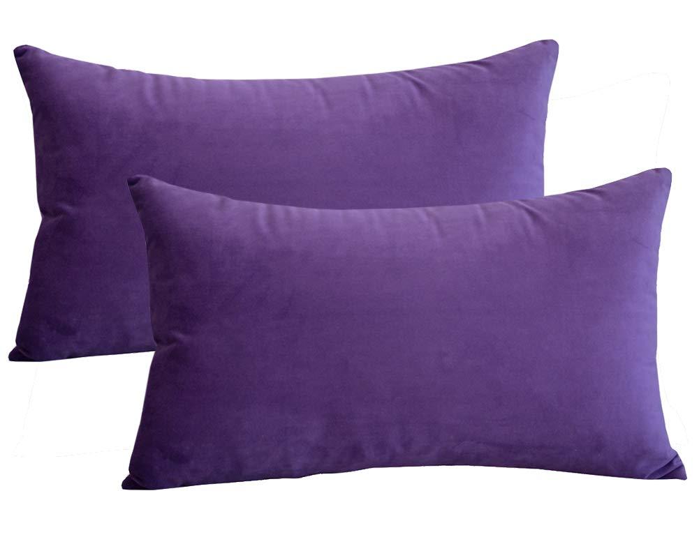 Lutanky Pack de 2 Fundas de Terciopelo Elegante Throw Pillow Funda de cojín Suave Rectángulo sólido Fundas de ...