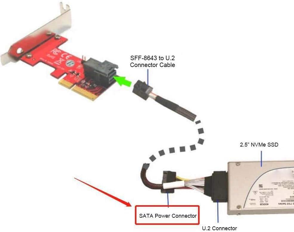 Lot 1.0Mm D/éPaisseur pour la Machine de Pyrogravure de 50W Nrpfell L/éPaisseur de la Machine de Pyrogravure de Courge de 23Cs