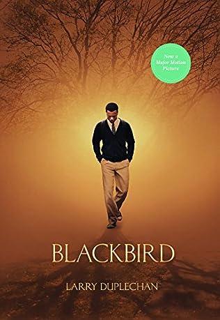 book cover of Blackbird